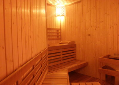 sauna professional
